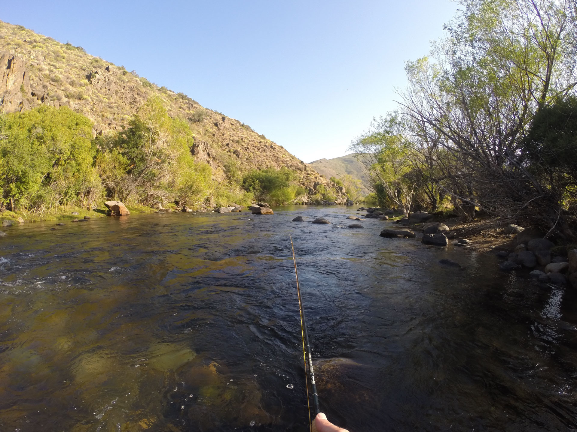 FLY FISHING IN NAHUEL MAPI